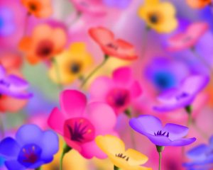 colorful-flowers-pictures-Favim.com-504132 (1)