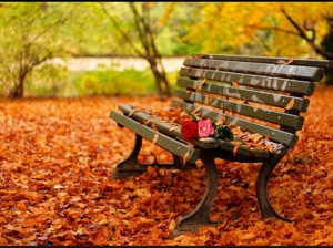 Romantic-autumn-daydreaming-18932448-1024-768